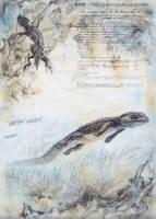 Jehol Biota--Monjurosuchus splendens by cheungchungtat