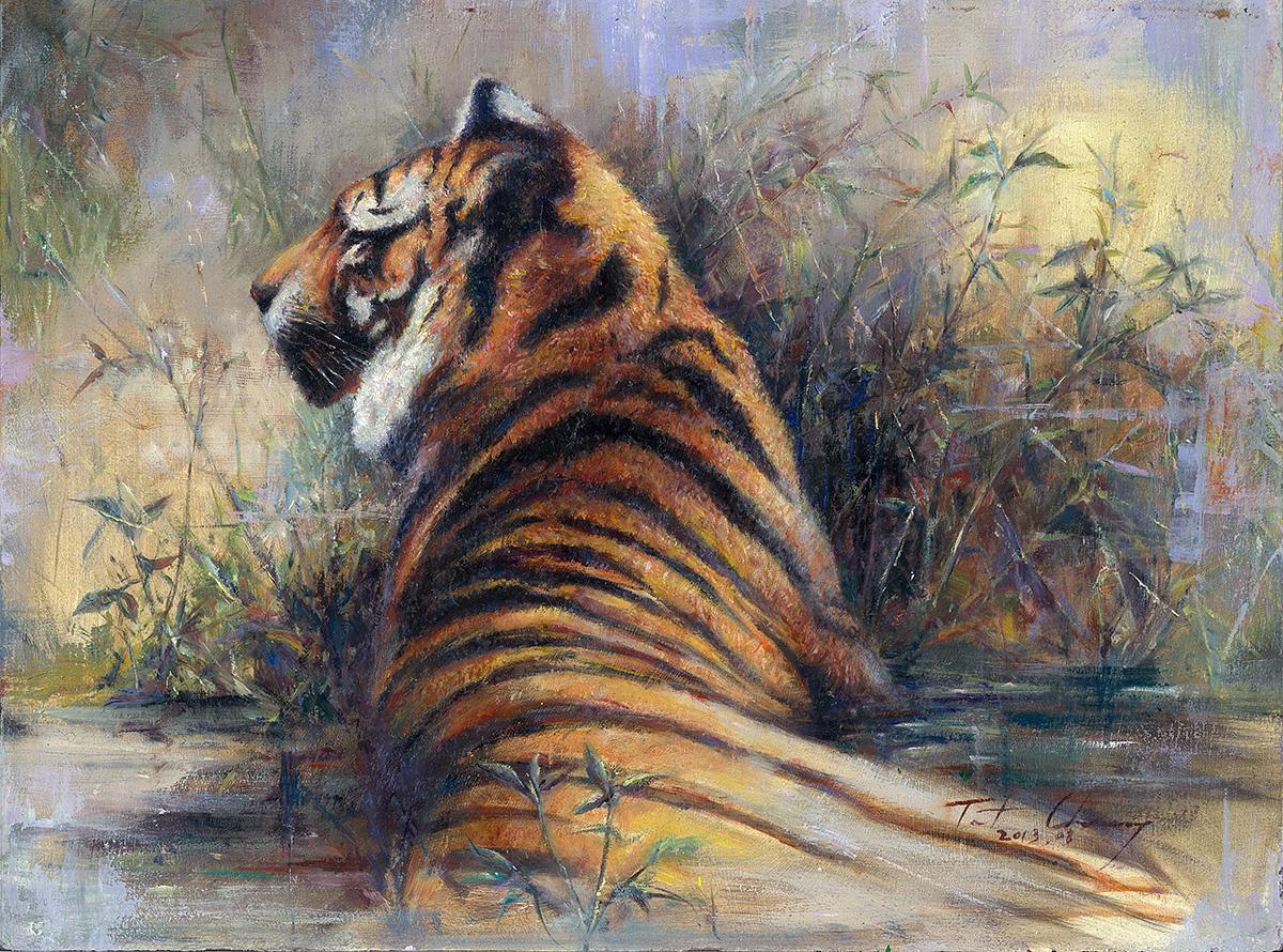 Staring - Tiger