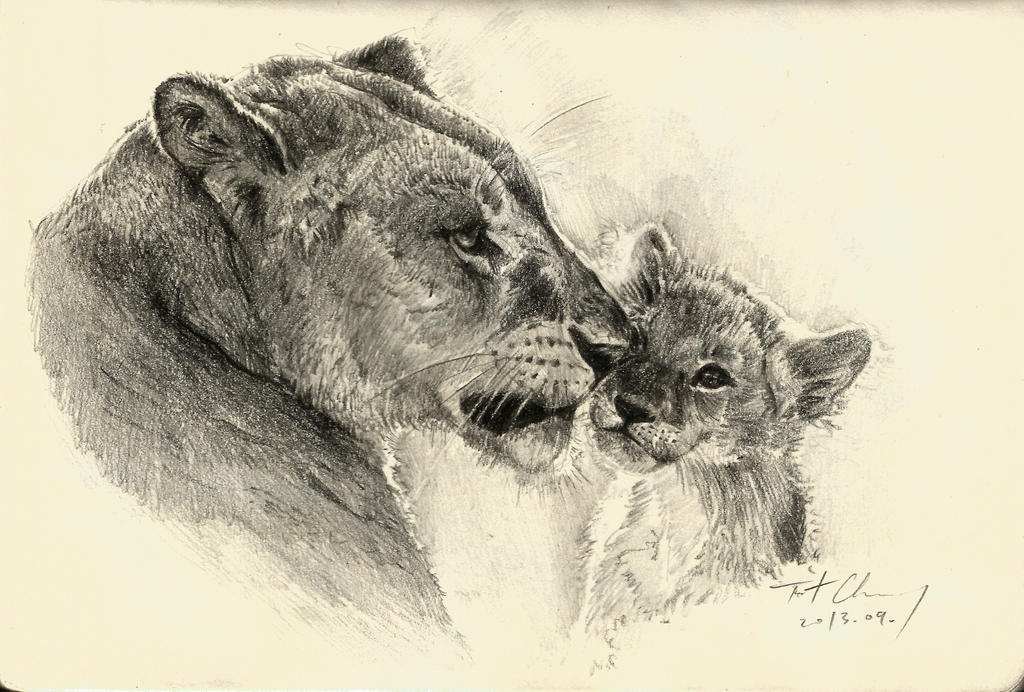 Mother and son -- Lion by cheungchungtat on DeviantArt