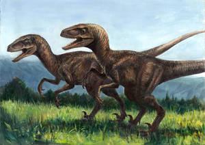 JP1 Velociraptors in field