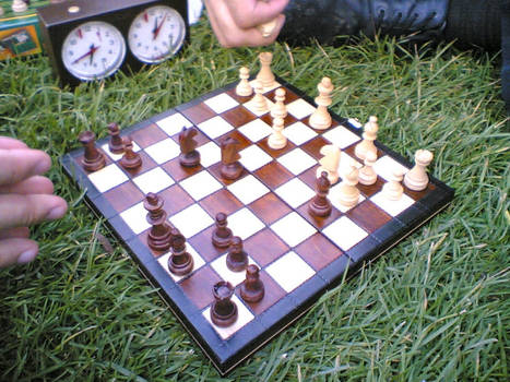 chess on grass