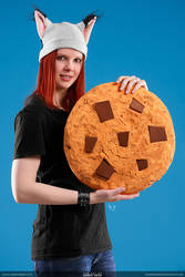 The Big Cookie