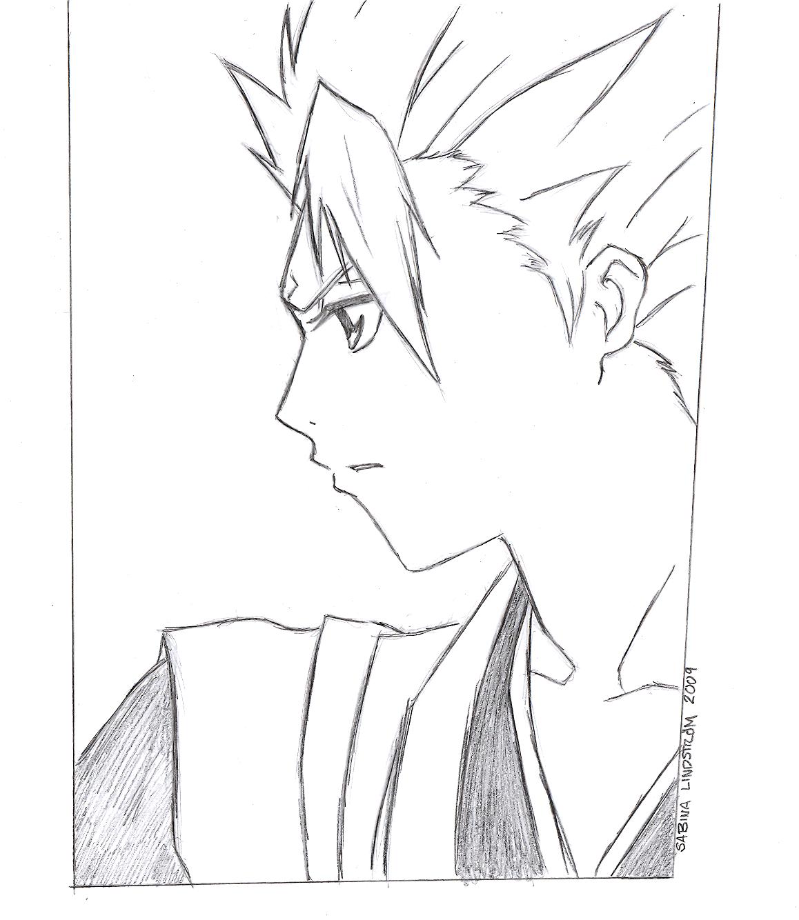 Hitsugaya Toushirou - Profile by Garnboll