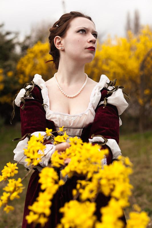 Venitian Dress 2 by LordOrgl