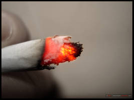 Macro Shots - Burning Oxygen