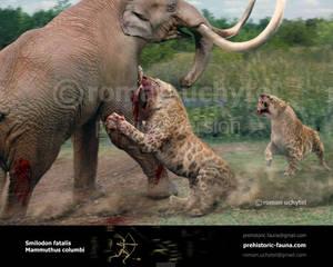 Smilodon fatalis and Mammuthus columbi