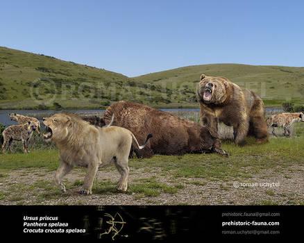 Ursus priscus and Panthera spelaea