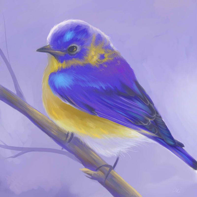Blue Bird Speedpaint