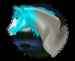 N4813 Lanterns in the Sky - Stallion