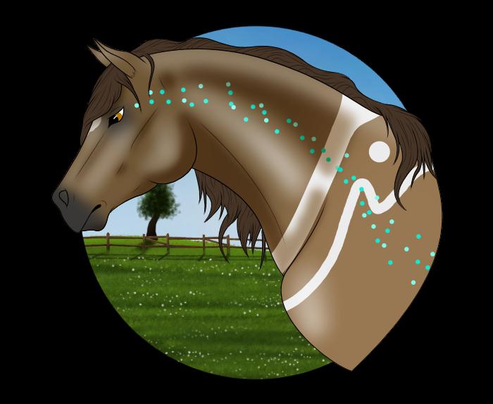 N5149 Grimoire - Stallion