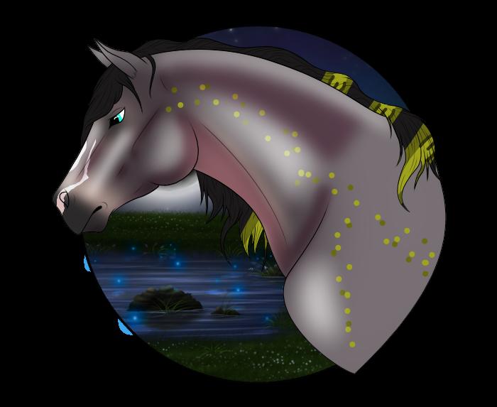 N5173 The Blind Ranger - Stallion