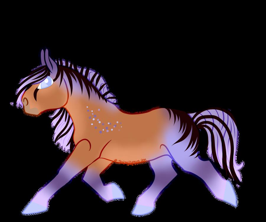 N5166 Malo Sveta - Stallion