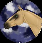 N5090 Sanoir - Stallion