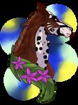 N4347 Albedo - Stallion