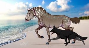 N5688 Dhidite - Stallion