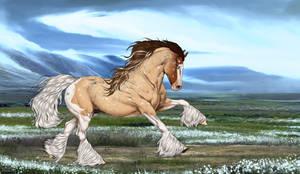 N8181 Lethre - Stallion