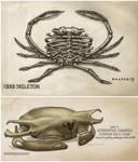 Crab Skeletons