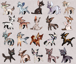 adopts open ! REPOSTED