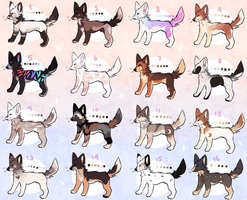 adopt batch open 6/16 REDUCED by pinewoIf
