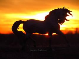 Two Bright Stars by BreyerPalooza21