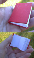 Miniature Labyrinth Book for Hawthorne