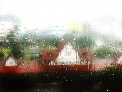 Slow Thoughts under the Rain