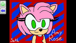 Amy Rose Wii U Sketch