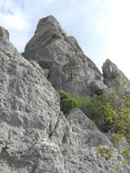 September 2013 Crimea Sudak P1060617 by IValerii