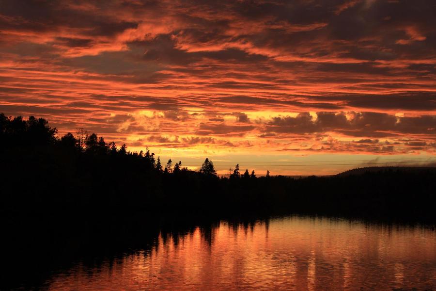 golden pond by Iluvdbush