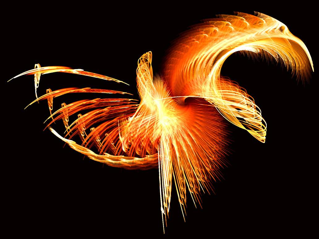 wallpaper graphic and vector phoenix wallpapers