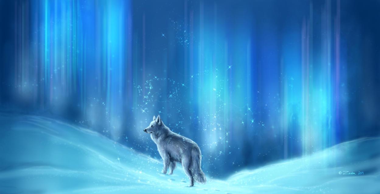 Winter by Zardra