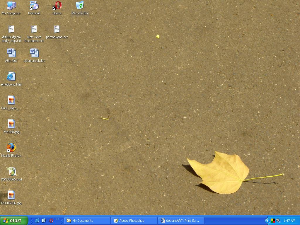 desktop gambar daun by poxsai