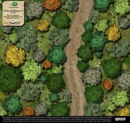 Trilha na Floresta (Forest Trail) - Map 2