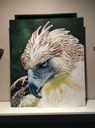 Philippine Eagle finished by Lobehamawesome
