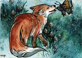 aceo for pooniefox by kailavmp