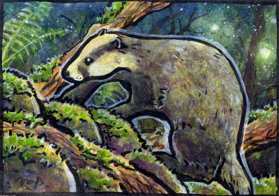 aceo badger by kailavmp