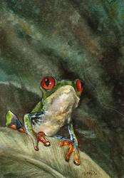 aceo (afa) treefrog by kailavmp