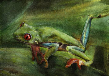 aceo treefrog (for redwall151) by kailavmp