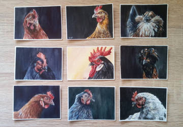 aceo series: the coop by kailavmp