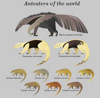 Anteaters of the world by kailavmp