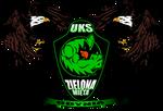 UKS Green Mint Gdynia by Wilku333