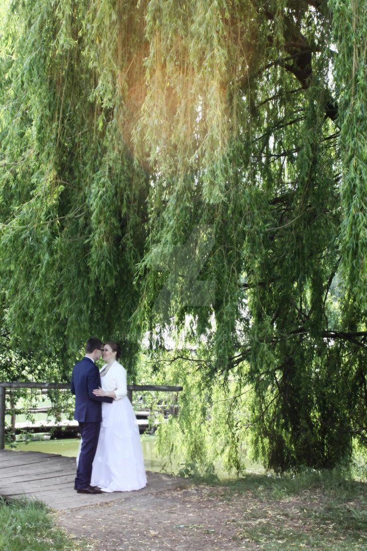 B+H wedding 05 by pryncezna