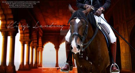 King's Landing Horse Pic