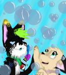 Bubble Bursting