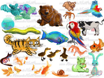 Animals Collection Page