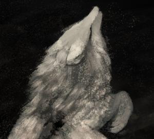 moondevourer's Profile Picture