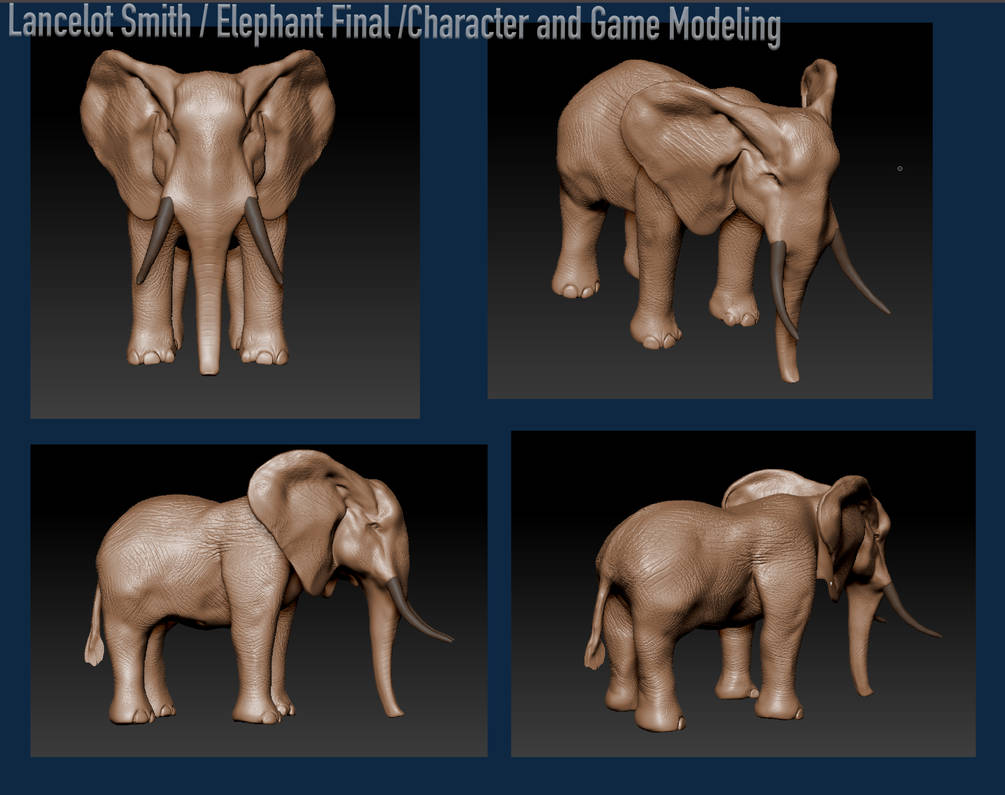 Elephant created in Z-Brush by lancelotsmith