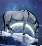 CATCH A FALLING STAR by Swan-Studio