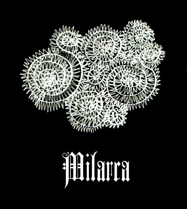 Milarca's Profile Picture