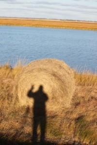 mreinig's Profile Picture